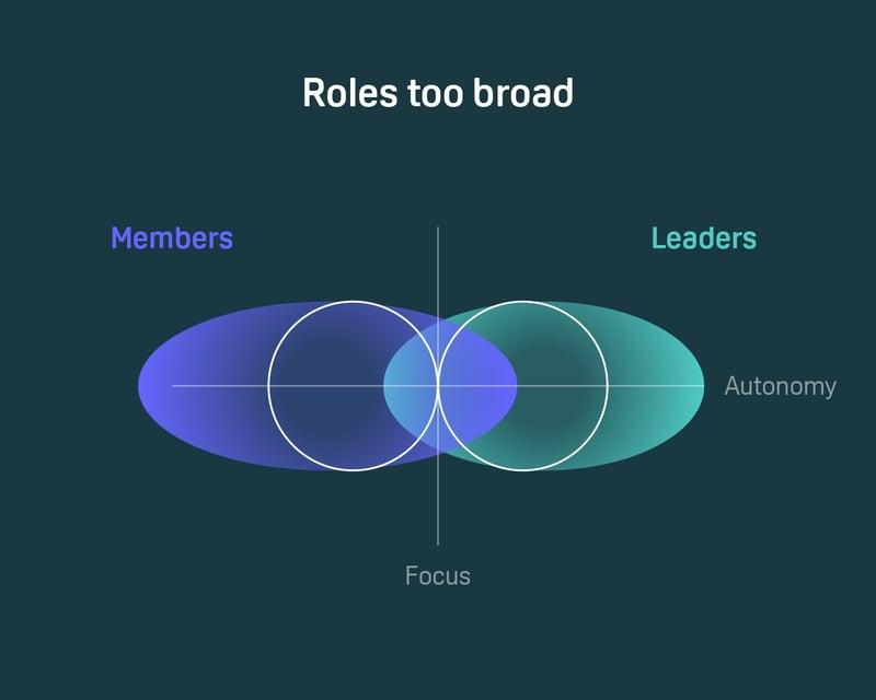 Roles too broad Holix